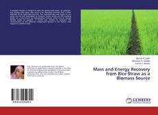 Bookcover of Mass and Energy Recovery from Rice Straw as a Biomass Source