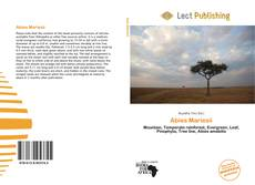 Bookcover of Abies Mariesii