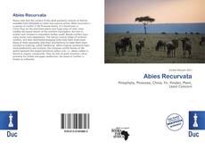 Bookcover of Abies Recurvata