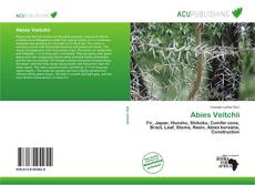Bookcover of Abies Veitchii