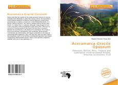 Bookcover of Aceramarca Gracile Opossum