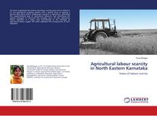 Bookcover of Agricultural labour scarcity in North Eastern Karnataka