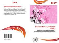 Deep external pudendal artery的封面