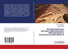 Bookcover of Инновационные методы обоснования, обеспечения и контроля устойчивости