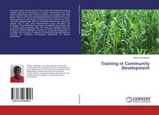 Bookcover of Training in Community Development