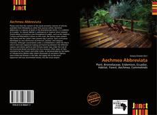 Обложка Aechmea Abbreviata