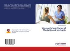 African Culture, Maternal Mortality and Morbidity kitap kapağı