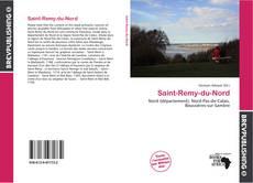 Buchcover von Saint-Remy-du-Nord
