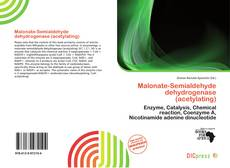 Bookcover of Malonate-Semialdehyde dehydrogenase (acetylating)
