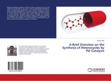 Bookcover of A Brief Overview on the Synthesis of Heterocycles by Pd–Catalysis