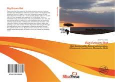 Bookcover of Big Brown Bat
