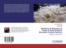 Bookcover of Modeling & Mapping of Flood in District Mandi Bhauddin Punjab Pakistan