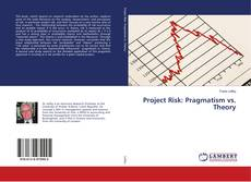 Обложка Project Risk: Pragmatism vs. Theory