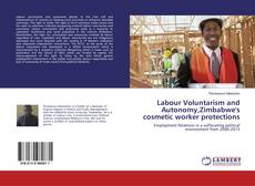 Bookcover of Labour Voluntarism and Autonomy,Zimbabwe's cosmetic worker protections