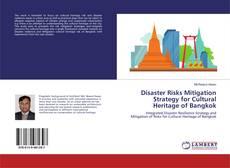 Disaster Risks Mitigation Strategy for Cultural Heritage of Bangkok kitap kapağı