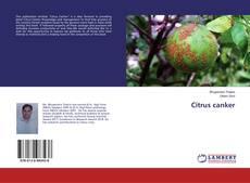 Bookcover of Citrus canker