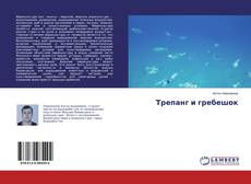 Bookcover of Трепанг и гребешок