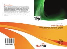 Обложка Exonuclease