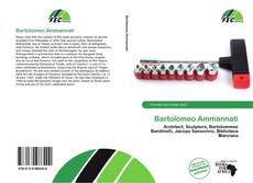 Buchcover von Bartolomeo Ammannati