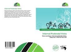 Обложка Internal Pudendal Veins