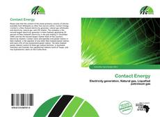 Bookcover of Contact Energy