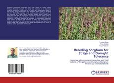 Bookcover of Breeding Sorghum for Striga and Drought Tolerance