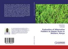 Bookcover of Evaluation of Alternative Fodders to Napier Grass in Western, Kenya