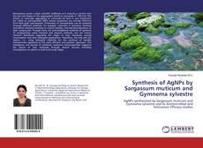 Synthesis of AgNPs by Sargassum muticum and Gymnema sylvestre的封面