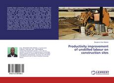 Bookcover of Productivity improvement of unskilled labour on construction sites