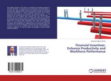 Bookcover of Financial Incentives: Enhance Productivity and Workforce Performance