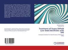 Bookcover of Treatment of Supsa Oilfield Low Debit Boreholes with SAS