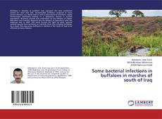 Borítókép a  Some bacterial infections in buffaloes in marshes of south of Iraq - hoz