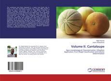 Bookcover of Volume II. Cantaloupe