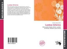 Copertina di Lumbar Arteries