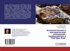 """Buchcover von Аналитические и методические инновации, применяемые в ТОО""""Два Кей"""""""