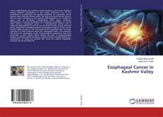 Bookcover of Esophageal Cancer in Kashmir Valley