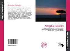 Bookcover of Actinotus Helianthi
