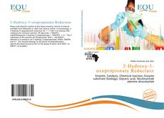 Bookcover of 2-Hydroxy-3-oxopropionate Reductase