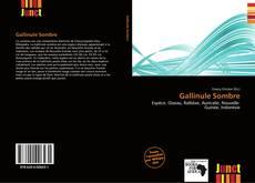 Bookcover of Gallinule Sombre
