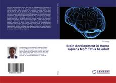 Bookcover of Brain development in Homo sapiens from fetus to adult