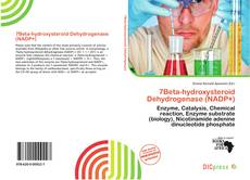 Bookcover of 7Beta-hydroxysteroid Dehydrogenase (NADP+)