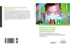 Benzyl-2-methyl-hydroxybutyrate Dehydrogenase kitap kapağı