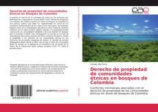Portada del libro de Derecho de propiedad de comunidades étnicas en bosques de Colombia