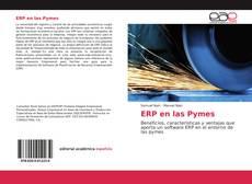 Couverture de ERP en las Pymes