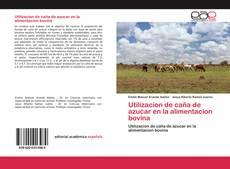Bookcover of Utilizacion de caña de azucar en la alimentacion bovina