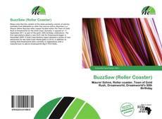 Capa do livro de BuzzSaw (Roller Coaster)