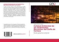 Bookcover of Calidad Ambiental de los Sedimentos Recientes del Golfo de Cariaco