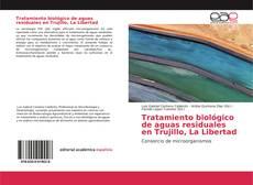 Borítókép a  Tratamiento biológico de aguas residuales en Trujillo, La Libertad - hoz