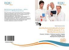 Bookcover of Methylenetetrahydrofolate—tRNA-(uracil-5-)-Methyltransferase