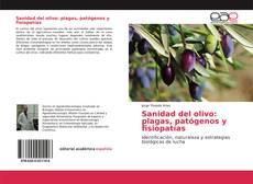 Bookcover of Sanidad del olivo: plagas, patógenos y fisiopatías